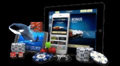 online casino met de paysafecard